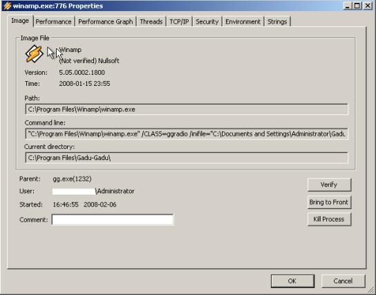 winamp_process21.png